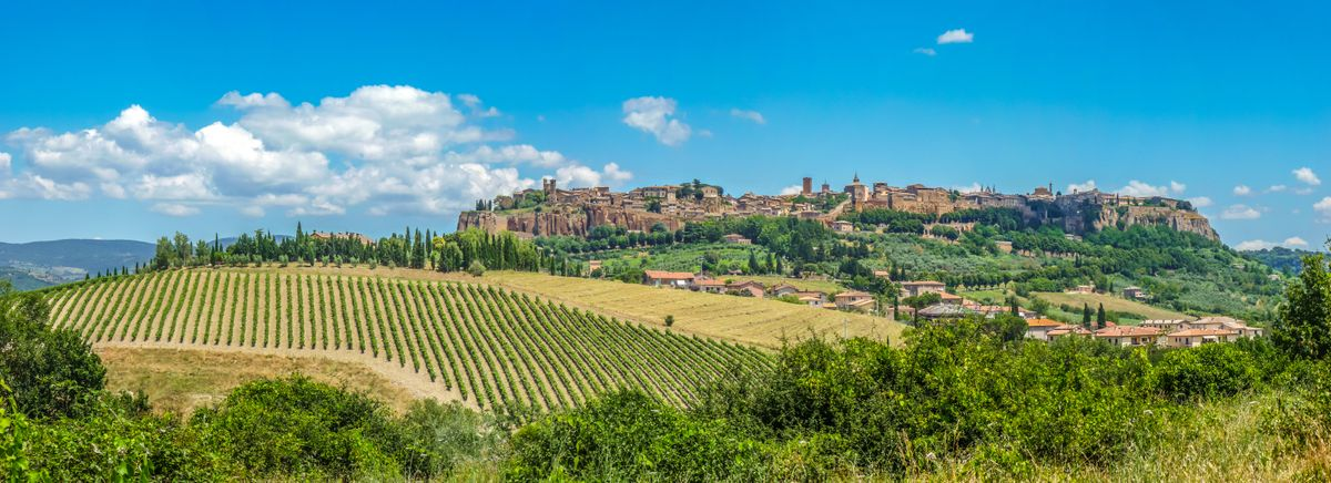 tour of wine in tuscany